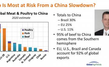 Brett Stuart expuso sobre el futuro de la comercialización de carnes en el mundo frente a la PPA y la era post COVID-19 en evento de ChilePork